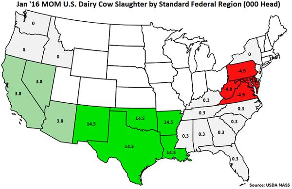 Jan 16 MOM US Dairy Cow Slaughter by Standard Federal Region - Feb 16