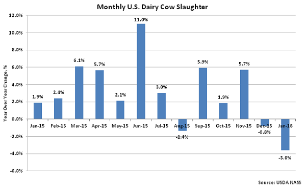 Monthly US Dairy Cow Slaughter2 - Feb 16